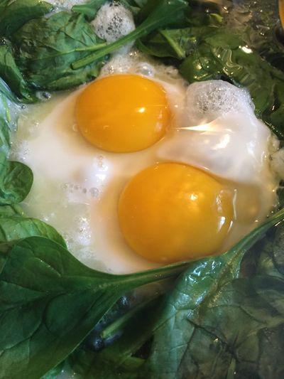 Egg Egg Yolk