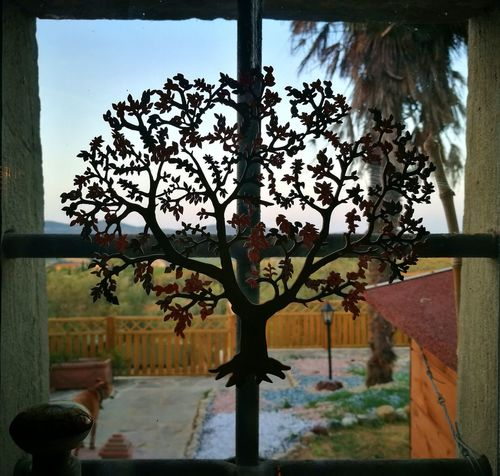 S delightful corner of my best friend's home 😆😆😆😆😍😍😍😍😍 Window Tree Nature Day Love My Family ❤ Love❤ Love Love Love.♥♥♥ Beauty In Nature Scenics Sunlight