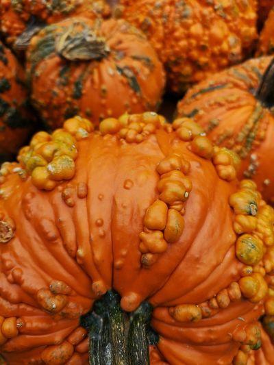 Pumpkin🎃 Pumpkin Fall Autumn Halloween Pumpkin Patch P20 Pro Huaweiphotography Huaweip20pro UnderSea Close-up