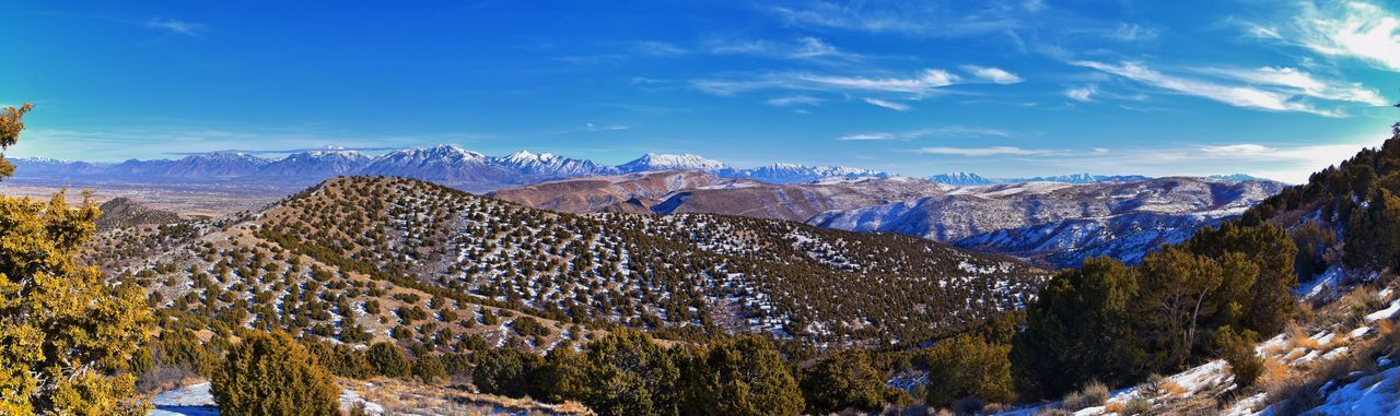 Panoramic view of pine trees and snowcapped mountains against sky