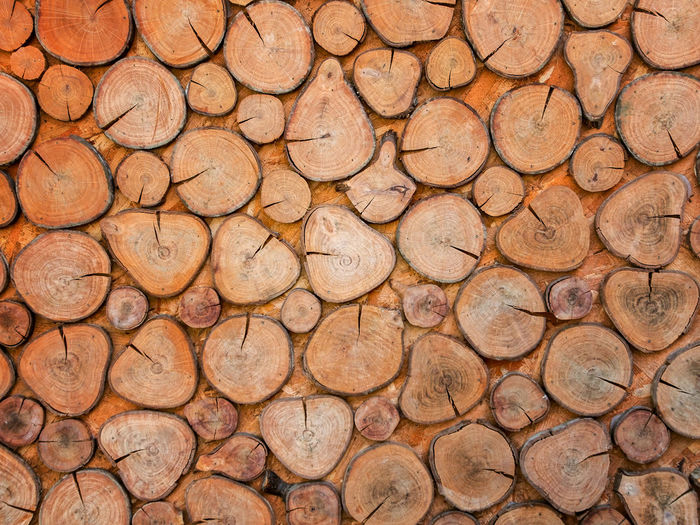 Arid Climate Backgrounds Close-up Cracked Day Deforestation Environmental Issues Full Frame Log Lumber Industry Nature No People Outdoors Pattern Stack Timber Tree Tree Ring Wood - Material Woodpile