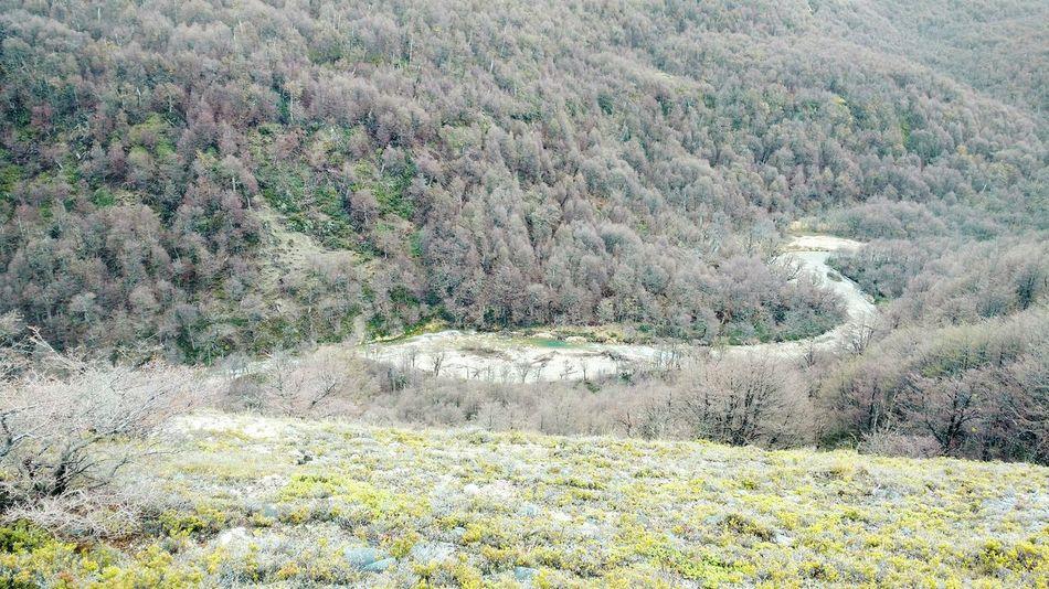 Rio River Cañadón Nature Naturaleza Bosque Natural Nativo Nothofagus Lenga Chubut Patagonia