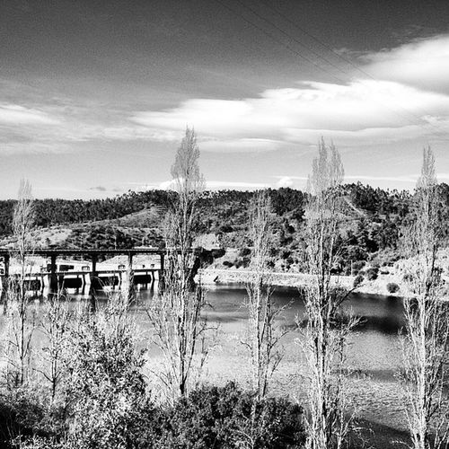 #fratel #barragemdofratel #portalegre #alentejo #portugal #iphone5 #iphonesia #iphoneonly #iphonephotography #instagood #instagram #instalove #instamood #instadaily #instagramhub #portugaligers #portugaldenorteasul #igers #igersportugal #photography #phot Pictureoftheday Instalove Photography Portugaligers Portugal Igersportugal Iphoneonly Portugaldenorteasul Photooftheday Iphonephotography Iphonesia Fratel Instagram Barragemdofratel IPhone5 Instamood Portalegre Igers Alentejo Instagood Instagramhub Instadaily