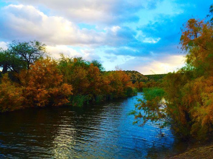 Roper Lake in Safford, Arizona. Arizona Light Nature Nature Photography Outdoor Photography Outdoors Landscape_photography Beauty In Nature Safford