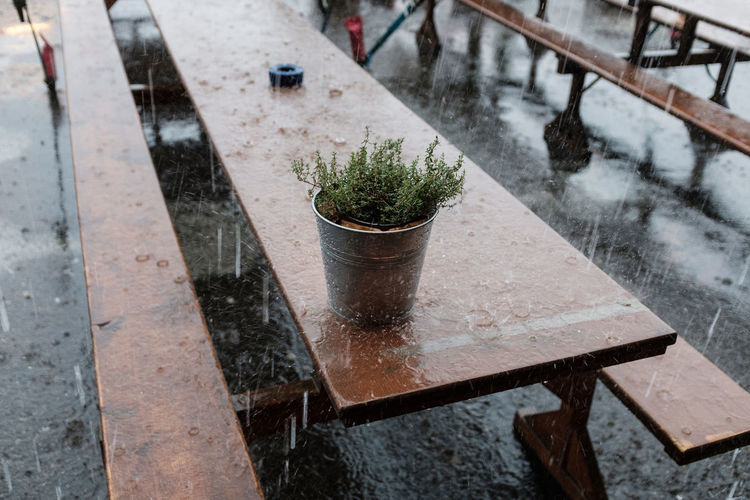 High Angle View Of Potted Plant On Picnic Table During Rainfall