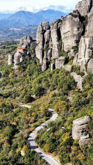 High angle view of trees on rocks