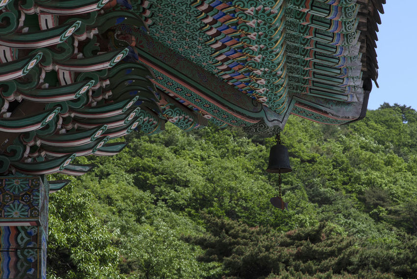 view of Bomunsa, a famous Buddhism temple in Seokmodo, Kimpo, Gyeonggido, South Korea Bomunsa Buddhism Temple Seokmodo Architecture Belief Buddhism Building Building Exterior Built Structure Day Ganghwado Green Color Growth Low Angle View Nature No People Outdoors Place Of Worship Plant Religion Roof Shrine Spirituality Temple Tree
