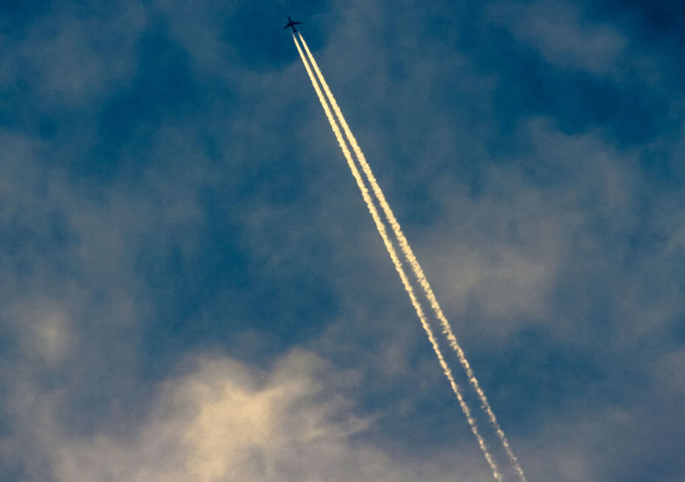 The plane in the high sky