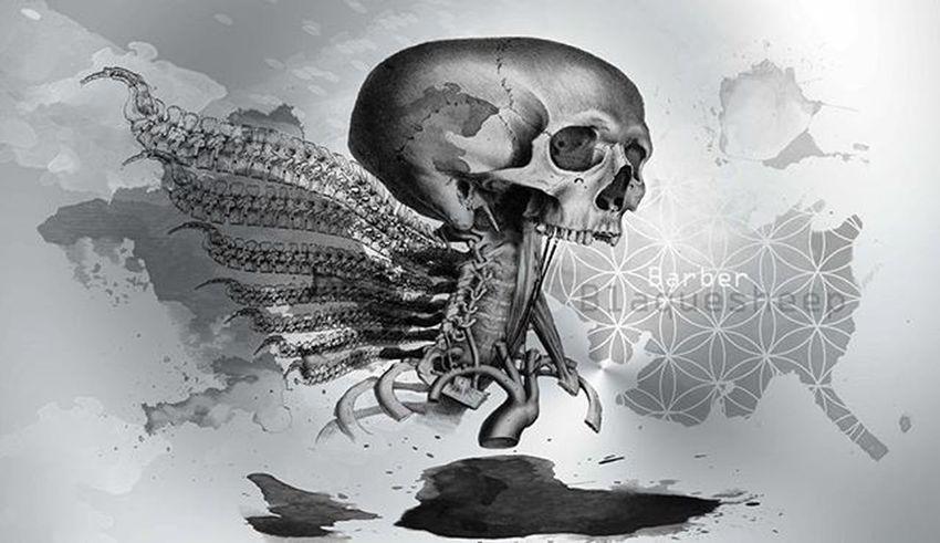 Houseofphoenixeleven Toothpuller 420 Inspired Art Artistsoninstagram Anatomicallyincorrect Anatomy Skull Fairy Toothfairy Watercolour Digitalart  Geometry Sacredgeometry Barberblaquesheep