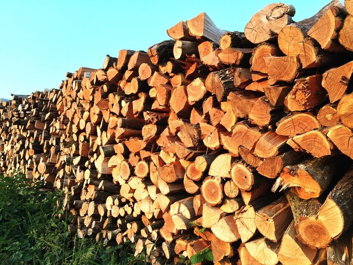 Bois Stock Wood Log Of Wood Store Storage Stacked Stacked Logs Bunk Photography Nature Relaxing Nature_collection