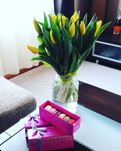 Flower Tulips🌷 Home Interior Special Moment Special Day ❤ Love Estonia Estoniangirl Freshness Spring Flowers Spring Springtime Yellow Sunlight Sunshine ☀ Gifts ❤