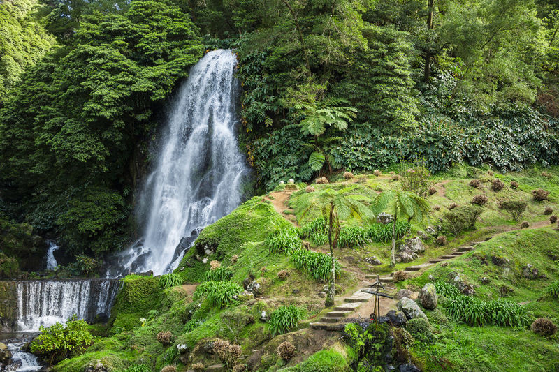 View of natural park of ribeira dos caldeiroes located in sao miguel island, azores, portugal.
