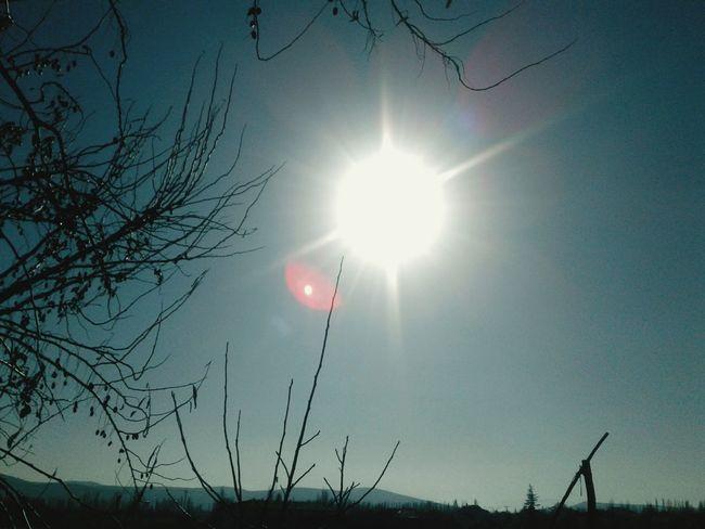 #sun #photo #professionalphoto #EyeEmNewHere #EyeEm #EyeemPhilippines #EyeEmEsterlinda Sun Sunlight Nature Outdoors Silhouette Sky Beauty In Nature