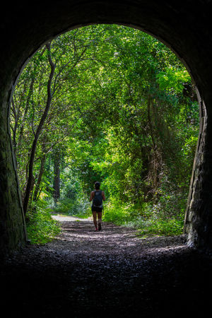 A woman is hiking in the woods through a old train tunnel. Tree One Person Forest Plant Full Length Rear View Walking Land Nature Direction The Way Forward Day Green Color Adult Leisure Activity Transportation Standing Women WoodLand Outdoors