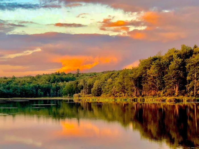 Fiery Clouds Reflection Beauty In Nature Tranquility Water Cloud - Sky Sky Tranquil Scene Scenics - Nature Lake Tree Sunset Nature Idyllic Non-urban Scene No People Waterfront