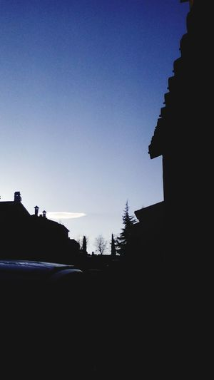 First Eyeem Photo Morning Picture Road To School Trees Silhouettes Neighbourhood Blue Sky