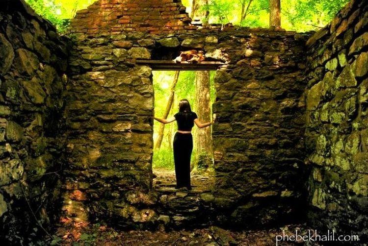 'every wall is a door' ralph waldo emerson EyeEm Nature Lover Nature_collection Door TreePorn