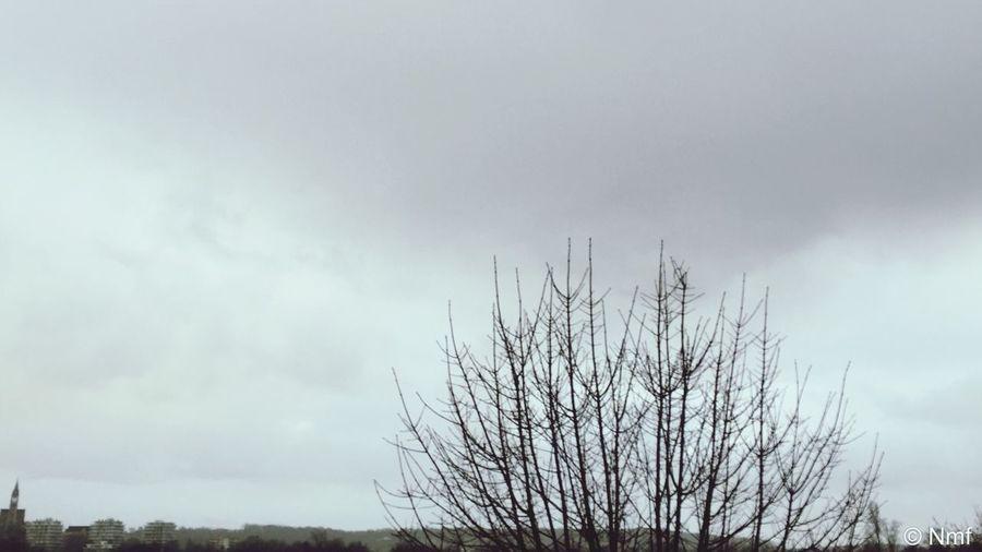 Charente Nature Iphone6plus How's The Weather Today? CIELFIE on va faire avec ????