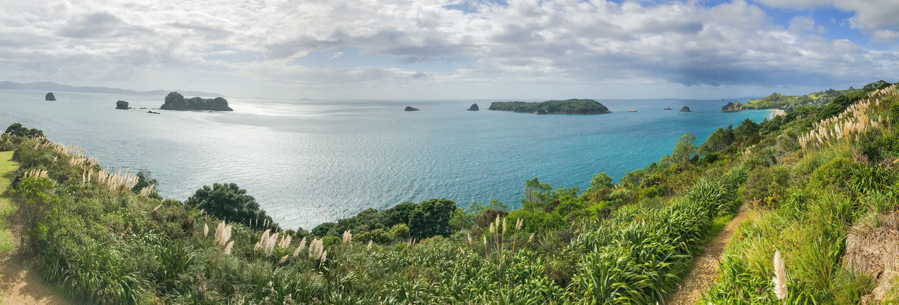 panorama of the coromandel peninsula in new zealand Travel Bay Beach Beauty In Nature Cloud - Sky Coromandel Peninsula Day Grass Horizon Horizon Over Water Idyllic Land Nature New Zealand No People Outdoors Pacific Ocean Panoramic Plant Scenics - Nature Sea Sky Tranquil Scene Tranquility Water Summer Road Tripping The Great Outdoors - 2018 EyeEm Awards