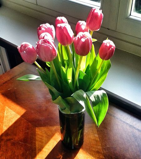 Flowers Tulipani Sorpresa!!!! Fiori