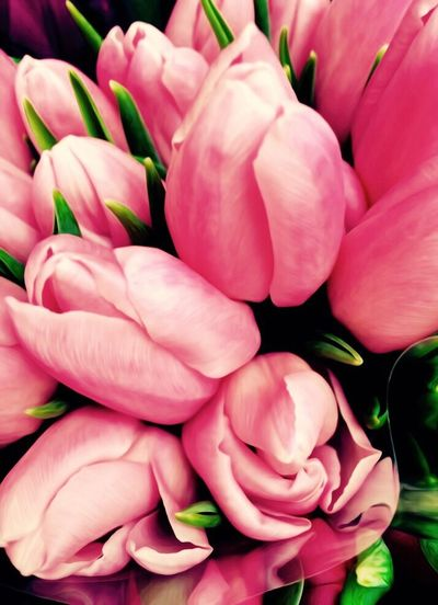 To all the mothers... Tulips Spiring Flowers Nature Beautiful Bunch Of Flowers Bouquet Pastel Colors Pastel Coloured Flowers Pink Tulips Pink Flowers Gift Bloom Bouquet Of Flowers