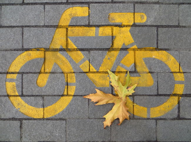 I want to ride my bicylce, I want to ride my bike... when it's bumpy or when it's smooth Asphalt Autumn Collection Autumn Leaves Autumn🍁🍁🍁 Bicycle Bicycle Heaven Bicycle Track Bicycles Bike Biking Communication Fall Beauty Fall Leaves Fall_collection Fallen Leaves Ground Pattern Pavement Pavementporn Street Textured  Town Wall Paint The Town Yellow