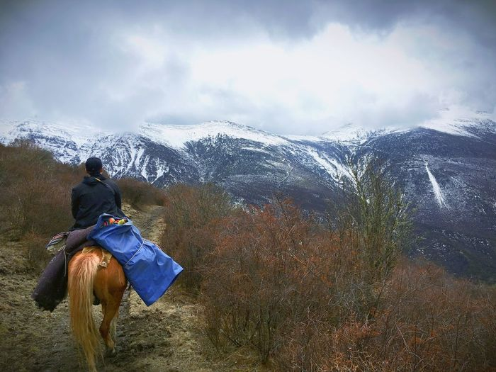 Rear view of man horseback riding against mountains