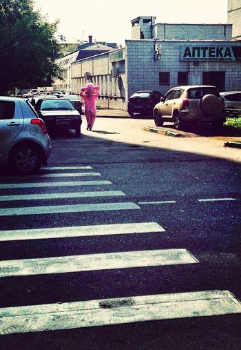 по улицам свинья ходила