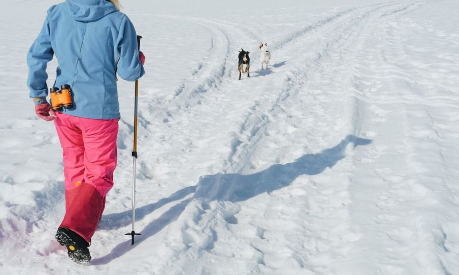 woman hiking with her two dogs in winter Dog Dogs Hike Hiking Landscape Mountain Nature Outdoors Owner People Person Snow Stroll Two White Winter Woman