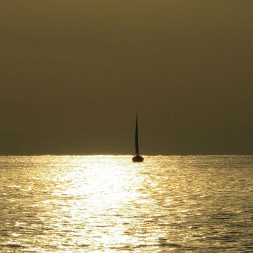 Sailing Sailboat Sunset 油壺沖 Against The Light Gold Sagamiwan Sagami Bay