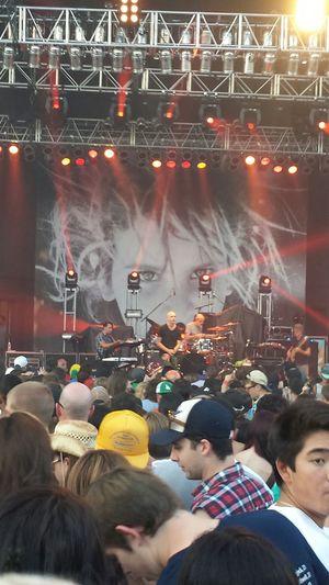 Matisyahu live in Mesa, Arizona, 8-8-13. Matisyahu Concert Rap Singer
