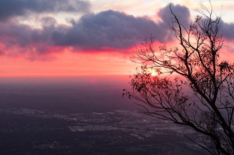 Cozy Melbourne Evening EyeEm Best Shots Hot_shotz MelbournePhotographer Sunset Sky Beauty In Nature Cloud - Sky Tranquility Scenics - Nature Nature Dramatic Sky Silhouette