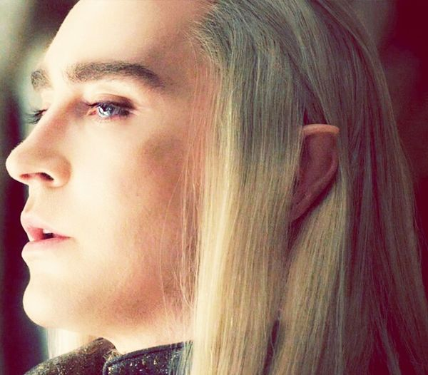 The King Thranduil