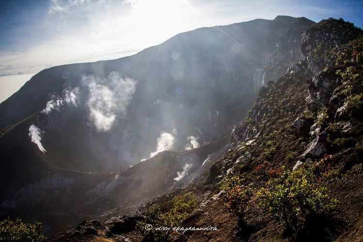 A crater by morning Crater Gedepangrango Gedemountain INDONESIA BeautifulIndonesia Wonderful Indonesia Nature Photography