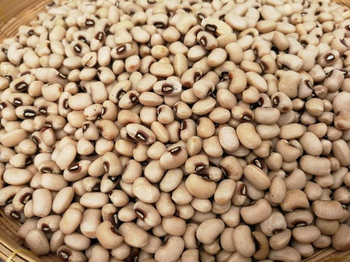 Soybean Soy Soybean Soybeans Legume Family Backgrounds Full Frame Close-up Food And Drink
