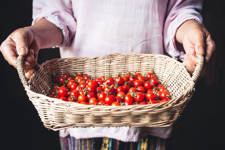 Tomato cherry in basket Tomato in hand South Asia Agriculture Basket Close-up Container Food Food And Drink Freshness Fruit Hand Healthy Eating Holding Human Hand Midsection One Person Real People Red Ripe Vegetable Wellbeing Wicker