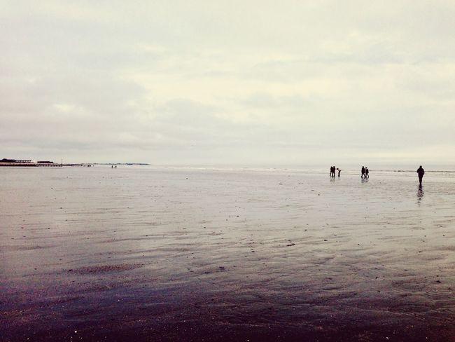EastWittering Melancholic Landscapes Friends