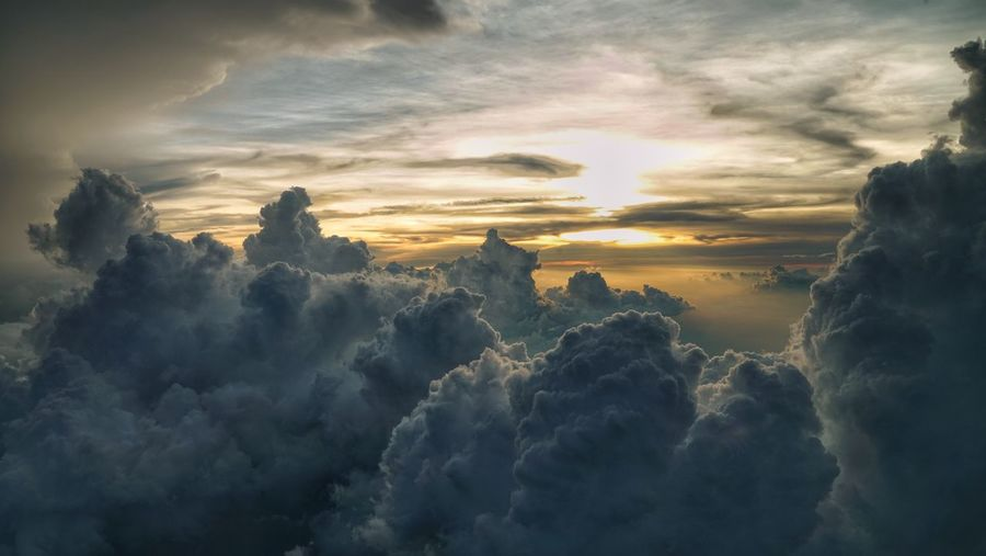 Above clouds Mountain Tree Gold Colored Forest Sky Only Atmospheric Mood Sun Forked Lightning Cumulus Romantic Sky Meteorology Overcast Moody Sky Dramatic Sky Shining Sunbeam