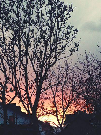 Sky ⛅ ☁⛅☀ 🌆city🌃 First Eyeem Photo