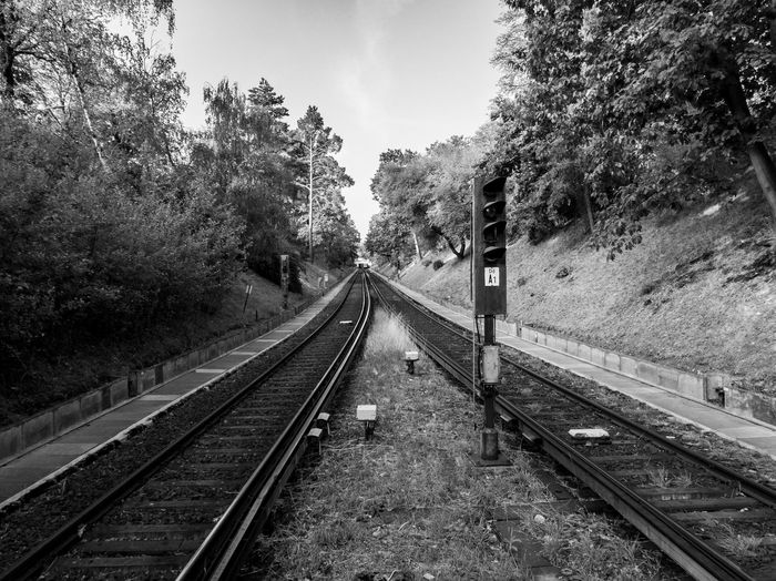 Go-west-photography.com Blackandwhite Blackandwhite Photography Black And White Berlin Berliner Ansichten U-Bahn S-bahn Railroad Track Track Rail Transportation Tree Plant Transportation No People Diminishing Perspective Direction The Way Forward Day Nature Growth vanishing point Mode Of Transportation Public Transportation Sky Travel Outdoors Land Long Parallel