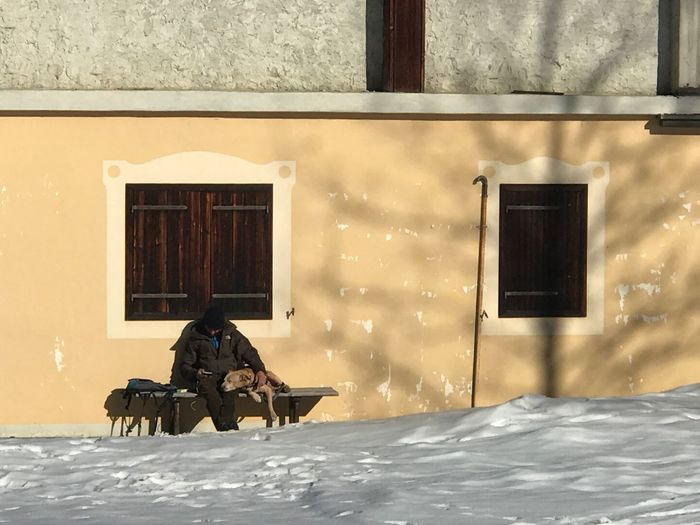 Horizontal Composition Not Recognisable Person Looking At Smartphone Sitting On A Bench Old Man With A Dog Winter Snow Cold Temperature Window Outdoors Building Exterior Built Structure Mammal Full Length Day