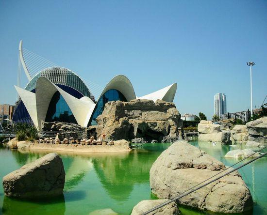 Valencia (Spain) Oceanographic EyeEmNewHere Waterfront Tranquil Scene Lake Summer Exploratorium