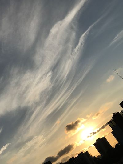 ❤️ Sky Sp Brasil