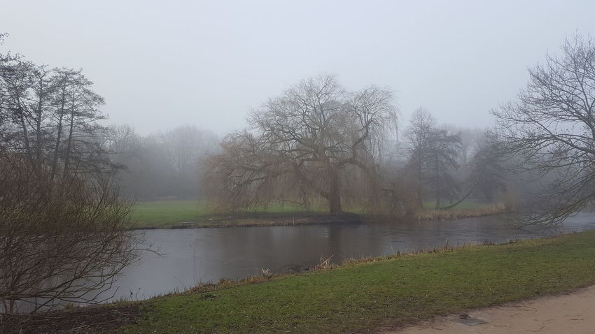 Alster Germany🇩🇪 Hamburg Hamburg City January January 2018 Winter Winter Fog Beauty In Nature Day Foggy Foggy Day Germany Lake Lake View Mystical Atmosphere Nature No People Outdoors Peaceful Peaceful And Quiet Silence Of Nature Water Tree Tranquility Tranquil Scene Scenics Landscape Fog Mist