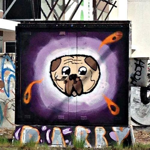 Graffiti Jake