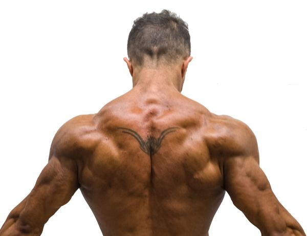 backbodybuilder 2 Bodybuildingmotivation Bodybuilding Bodysport Sport Fitness Fitness Training Fitnessmodel Fitnessmotivation Magazine EyeEm Selects Muscular Build Shirtless One Man Only Only Men Human Back Back Rear View Human Body Part Adult Healthy Lifestyle Torso Waist Up Men Lifestyles Adults Only Exercising Strength One Person The Human Body Handsome
