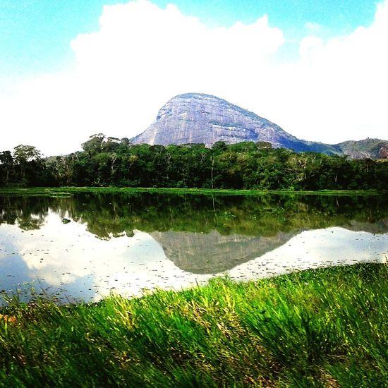 Jonas Rezende Samsung Galaxy S3 Brasil Nature Hello World Hi! Water Reflection
