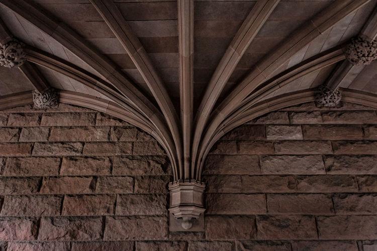 Ivy League Showcase: January Princeton University EyeEm Best Shots The Week On Eyem Princeton Check This Out