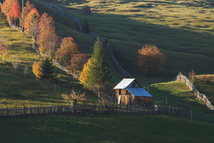 House on field during autumn