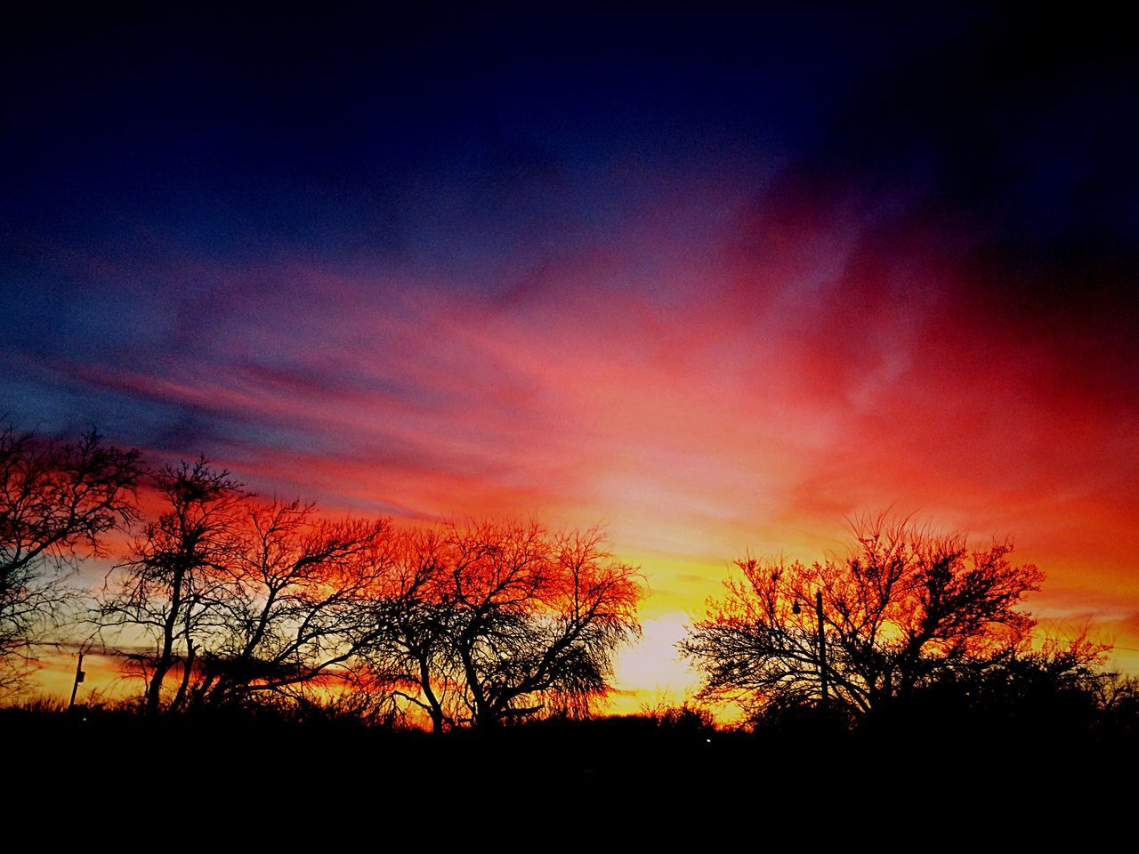 silhouette, sunset, orange color, tree, beauty in nature, tranquil scene, scenics, tranquility, nature, sky, majestic, idyllic, dramatic sky, no people, bare tree, cloud - sky, outdoors, landscape, day